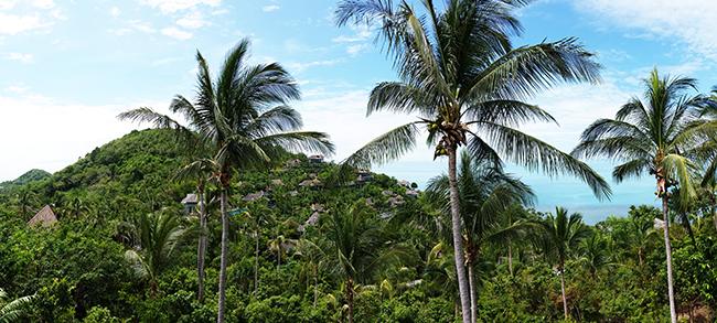 Four Seasons Koh Samui - Panorama View