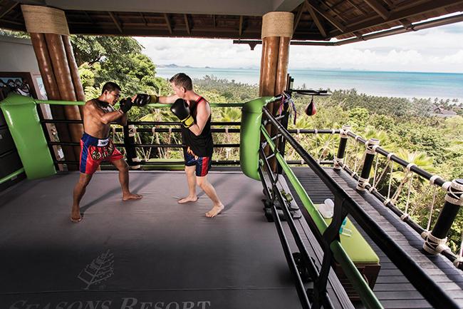 Four Seasons - Muay Thai Ring