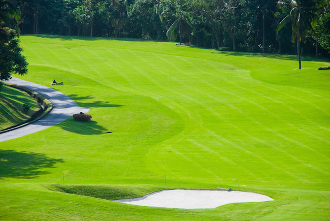 golfplatz-schottland